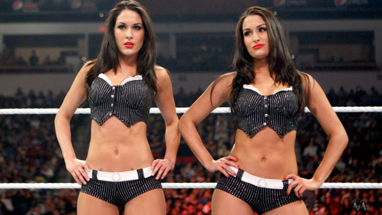 Images The Bella Twins naked (33 photos), Sexy, Paparazzi, Twitter, in bikini 2006