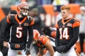Cincinnati Bengals quarterbacks Andy Dalton and A.J. McCarron (Getty Images)