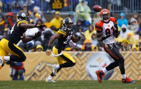 Terrell Owens is seen here attempting to make a catch against the Pittsburgh Steelers (Getty Images)