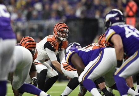 A.J. McCarron playing for the Cincinnati Bengals (Getty Images)