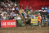 PBR rider Sean Willingham on top of a bull at an event