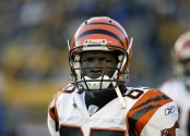 Cincinnati Bengals wide receiver Chad Johnson looks on during an NFL game