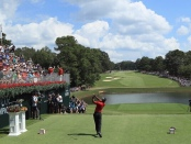 Pro golfer Tiger Woods teeing off at the Tour Championship at East Lake Golf Course