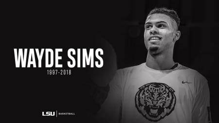 Former LSU Tigers basketball player Wayde Sims remembered after being killed