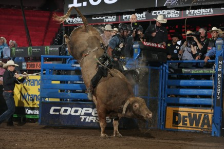 PBR buck into MSG for 2019 season kickoffshow