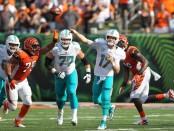 Miami Dolphins quarterback Ryan Tannehill hands the ball off to Kenyan Drake against the Cincinnati Bengals