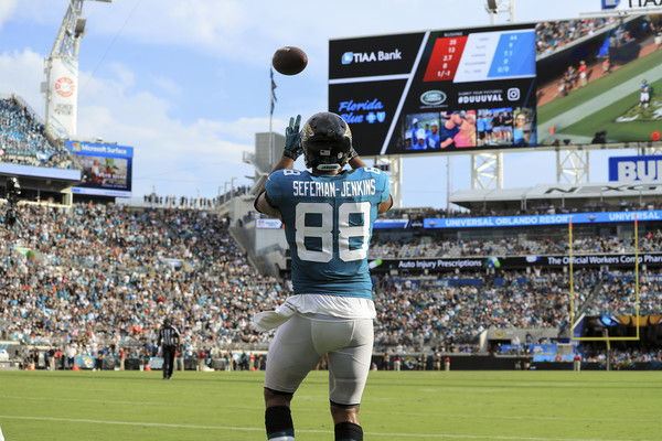 Former Jacksonville Jaguars tight end Austin Seferian-Jenkins makes a touchdown reception against the New England Patriots