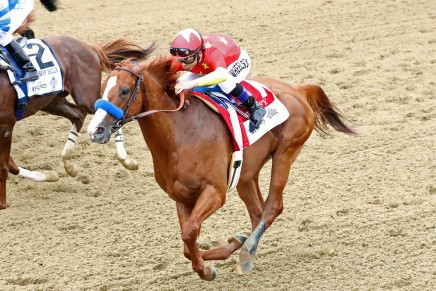 Report: Justify failed tests for scopolamine
