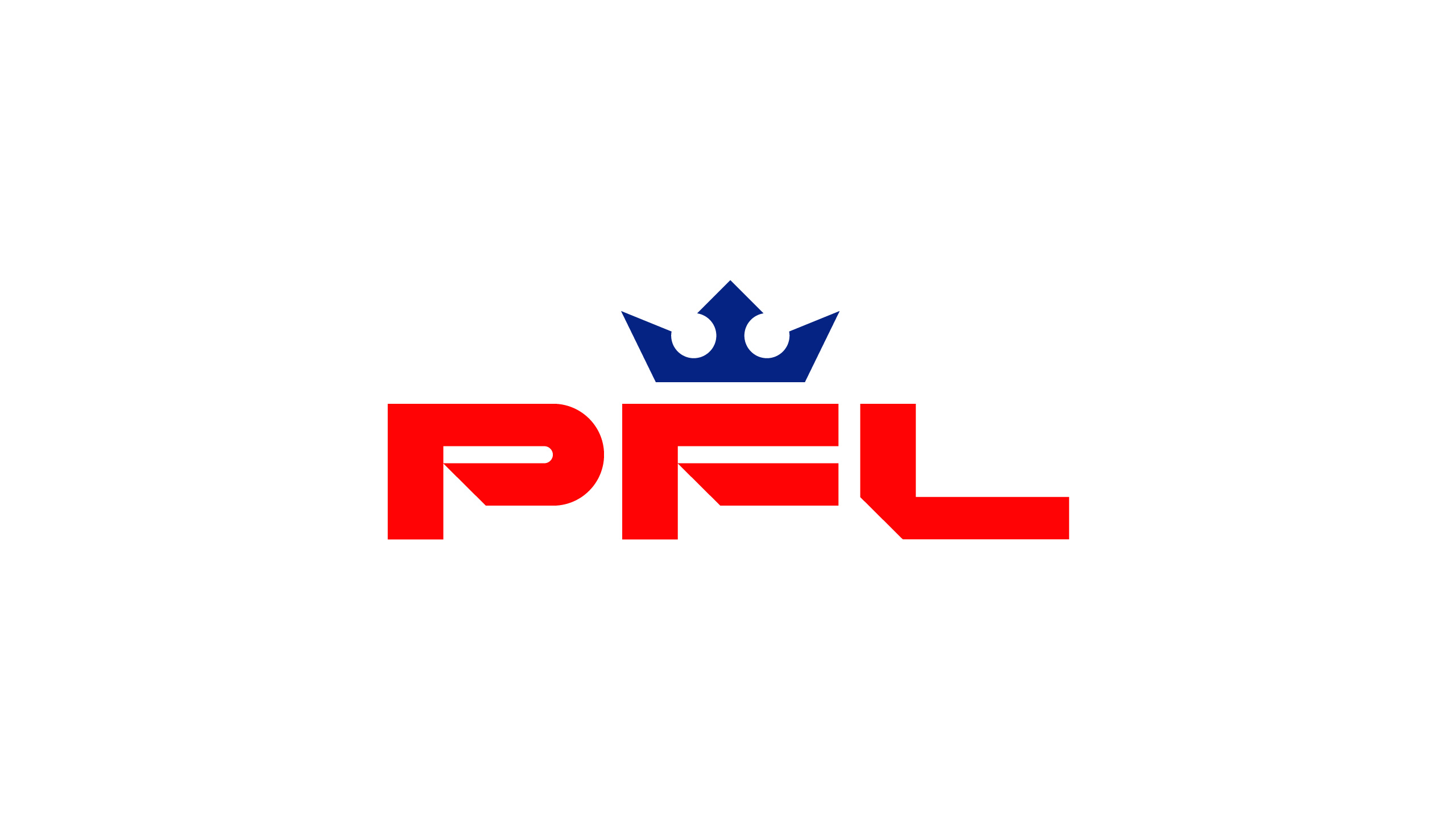 Pro Fighters League