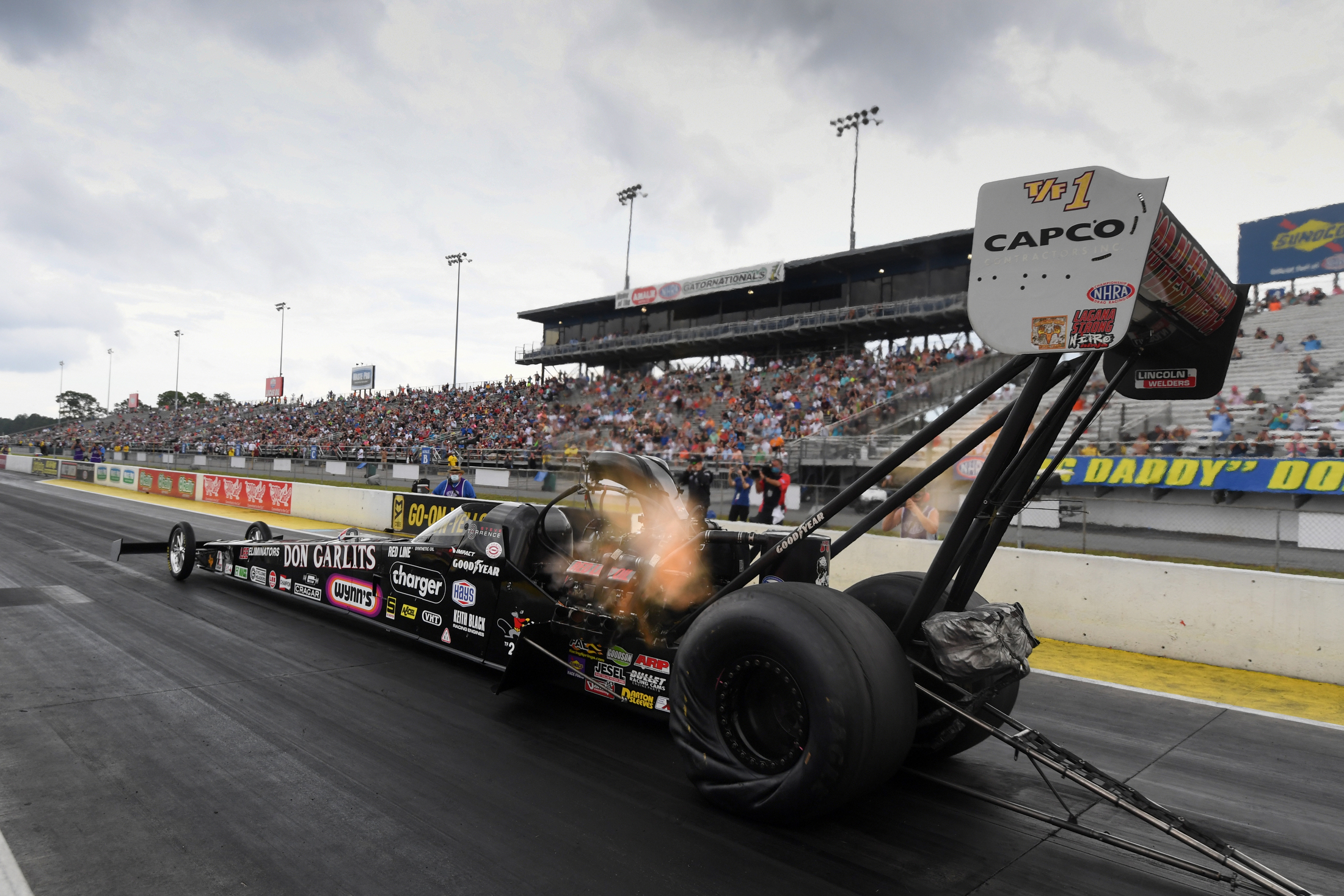Capco Contractors Top Fuel Dragster pilot Steve Torrence racing on Sunday at the Amalie Motor Oil NHRA Gatornationals