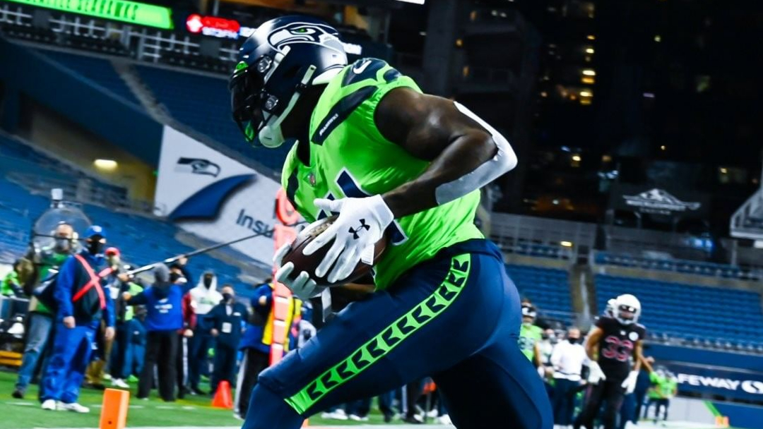 Seattle Seahawks wide receiver D.K. Metcalf makes a touchdown reception against the Arizona Cardinals